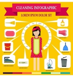 Cleaning infographic flat style vector