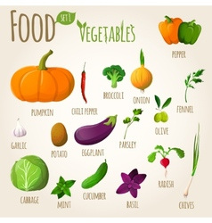 Food vegetables set vector image