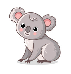 koala sits on a white background cute animal in vector image