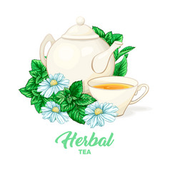 Porcelain teapot and tea cup with mint tea and vector