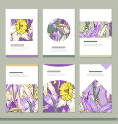 set with six floral romantic templates narcissus vector image