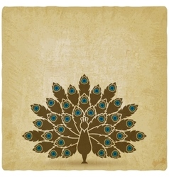 stylized silhouette of peacock with open tail old vector image
