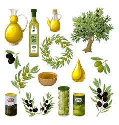Cartoon olive oil elements set vector