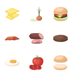 A set of pictures about burgers and ingredients vector
