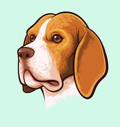 Beagle dog portrait vector