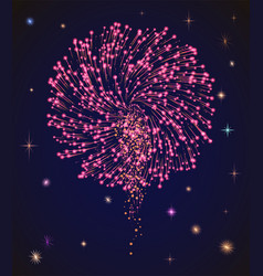bright firework on night sky celebrating holiday vector image