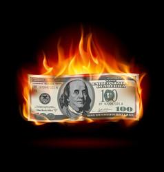 burning dollar on a black background for design vector image