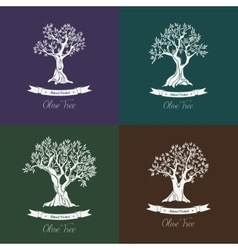 Greek oil olive trees set for olive grove vector image