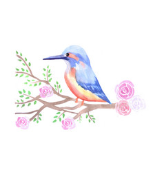Kingfisher and pink roses on a tree branch vector
