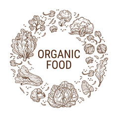 Organic food healthy dieting and eating vector