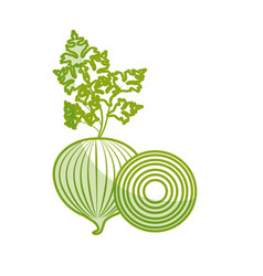 silhouette fresh onion and slice plant organ food vector image