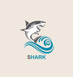 Angry shark icon vector
