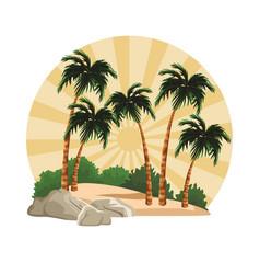 beach and island scenery vector image