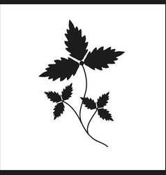 Branch with leaves black silhouette closeup vector