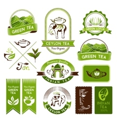 Green indian and black tea labels vector