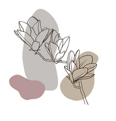 sketch spring flowers magnolia 1 vector image