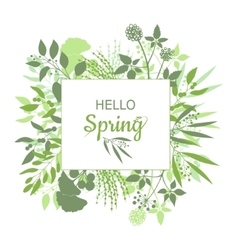 Hello Spring green card design with text in square vector image