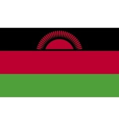 Malawi flag image vector