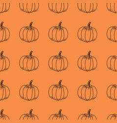 pumpkin pattern contour graphics on an vector image vector image