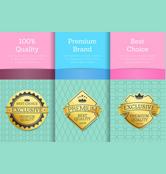 100 guarantee premium brand best choice set poster vector image