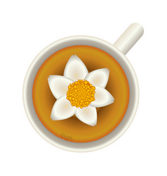 Flower soup food vector