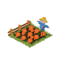 Isometric cartoon vegetable scarecrow garden bed vector