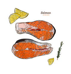 Salmon steak hand drawn rosemary vector