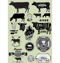 Set templates on theme cow beef vector