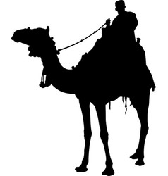 Silhouette a camel rider isolated vector
