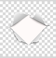 Snatched middle transparent paper vector