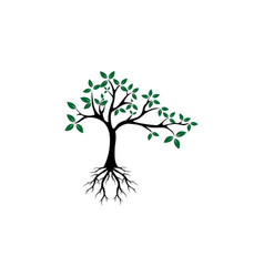 Tree root logo vector