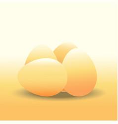 eggs chicken egg vector image