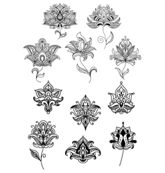 Persian and indian paisley flowers set vector image vector image