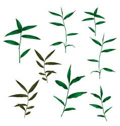 Green grass set vector