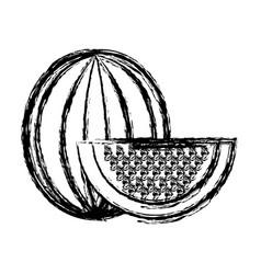 Contour delicious watermelon fruit icon vector