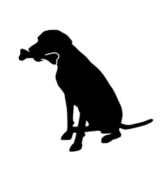 Dog with bone vector