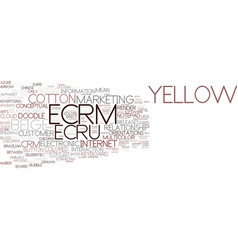 Ecrm word cloud concept vector