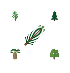 Flat icon bio set of jungle park decoration tree vector