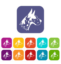 great dane dog icons set vector image
