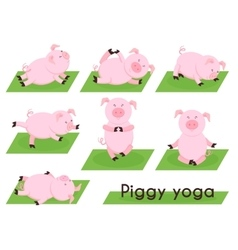 Pig yoga cute in different yoga poses vector