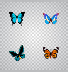 Set of butterfly realistic symbols with sky animal vector