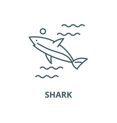 shark line icon linear concept outline vector image
