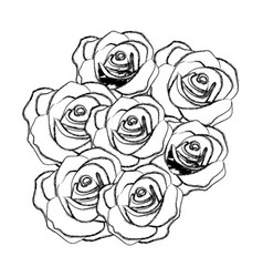 Silhouette roses plants icon vector
