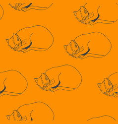 sweet kitten path seamless yellow pattern vector image