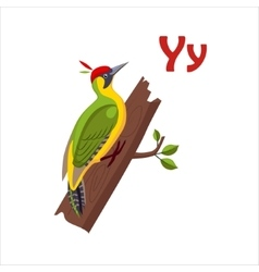 Yellow Wagtail Funny Alphabet Animal vector image
