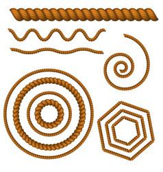 rope set on white background vector image