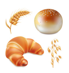 bun and croissant bread and bakery realistic vector image