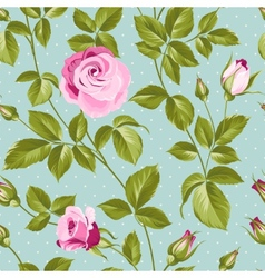 Roses pattern vector image