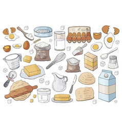 different dough items and kitchen accessories vector image