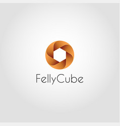 felly cube - circle hexagon logo template vector image
